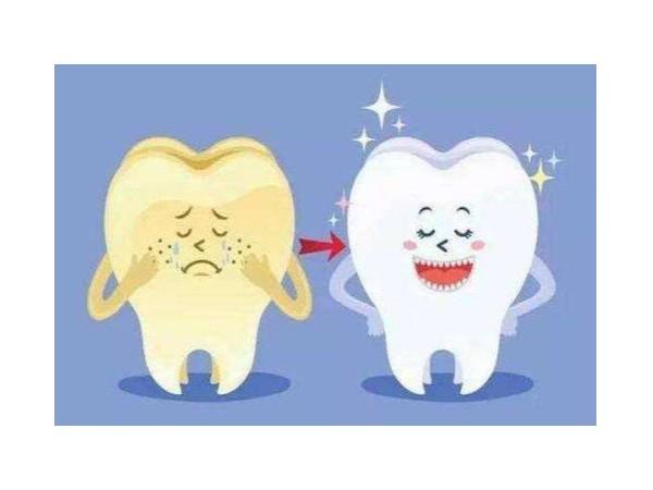 惊了!连猩猩都会用牙线了!
